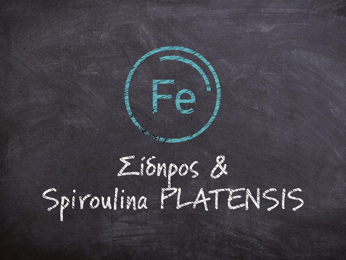 Μαυροπίνακας που γράφει με λευκή κιμωλία Σίδηρος και Spiroulina PLATENSIS