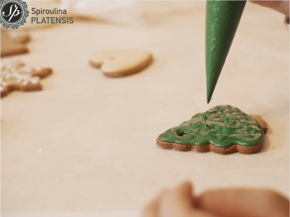 Μπισκότο με πράσινο γλάσο με Spiroulina PLATENSIS