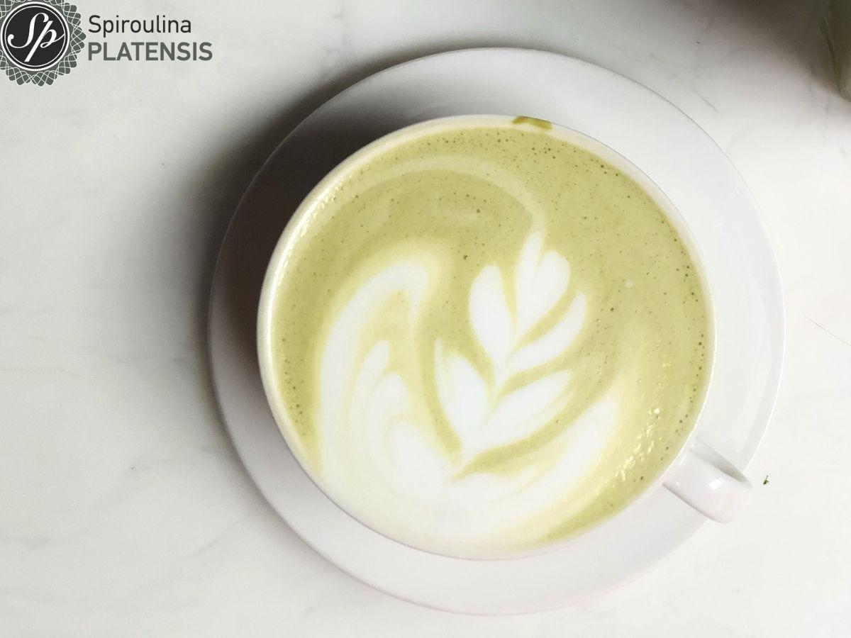 Καφές latte σε λευκό φλιτζάνι με Sp_PLATENSIS