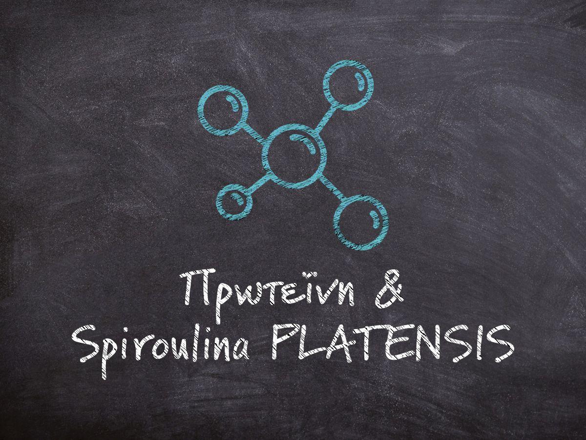 Μαυροπίνακας που γράφει πάνω με λευκή κιμωλία πρωτεΐνη και spiroulina PLATENSIS