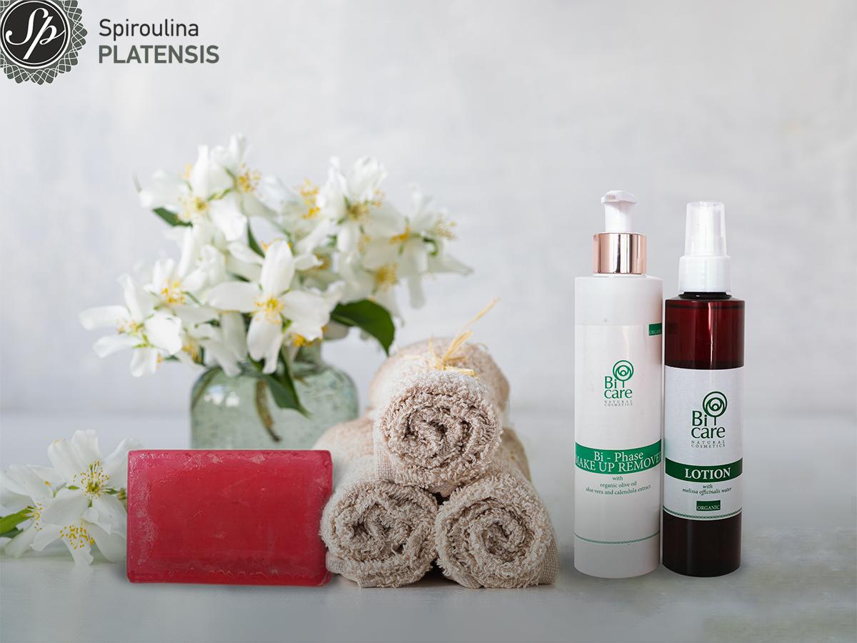 Προϊόντα για τον τέλειο καθαρισμό σε λευκό φόντο πετσέτες σε ρολό και βάζο με λευκά λουλούδια